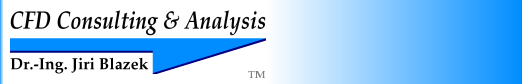 Computational Fluid Dynamics: Consulting & Analysis